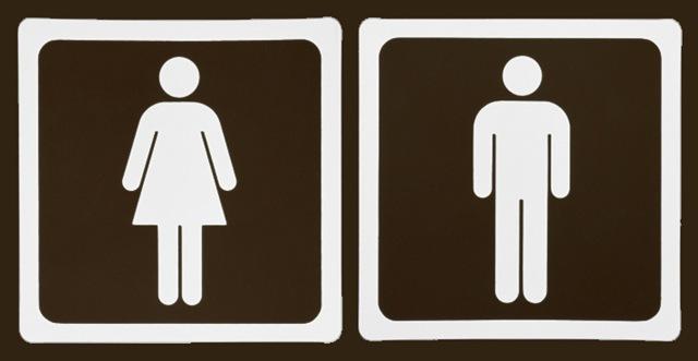 Comportamento feminino X Comportamento masculino