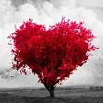 Expor sentimentos é uma das melhores maneiras para se viver bem