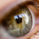oculofilia